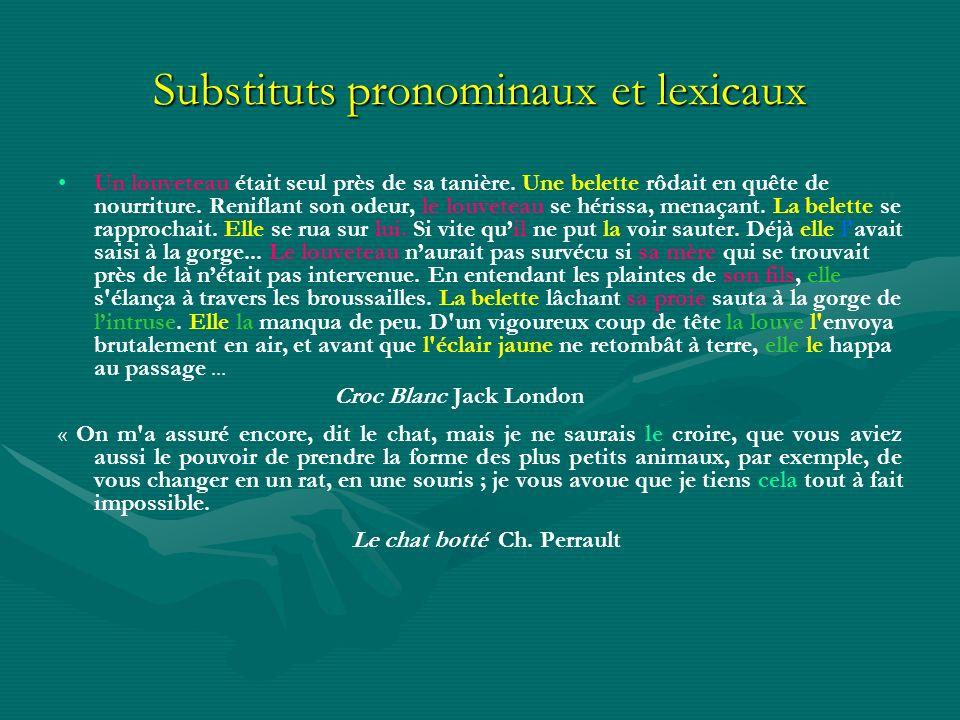 Substituts pronominaux et lexicaux