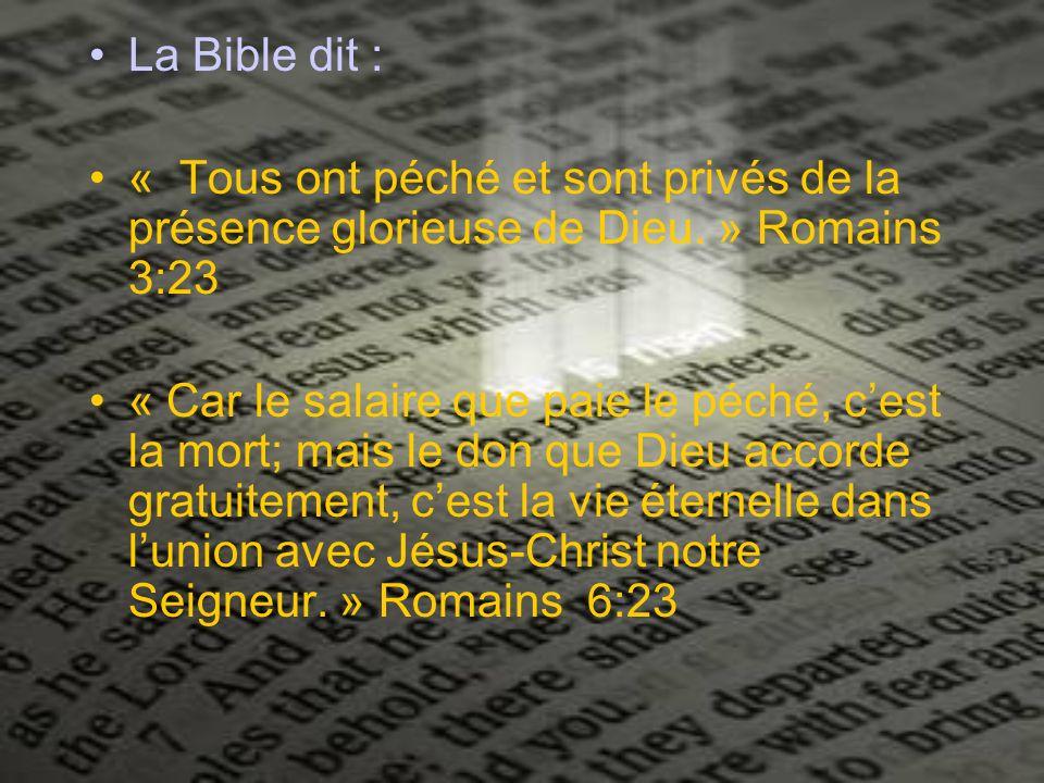 La Bible dit : « Tous ont péché et sont privés de la présence glorieuse de Dieu. » Romains 3:23.