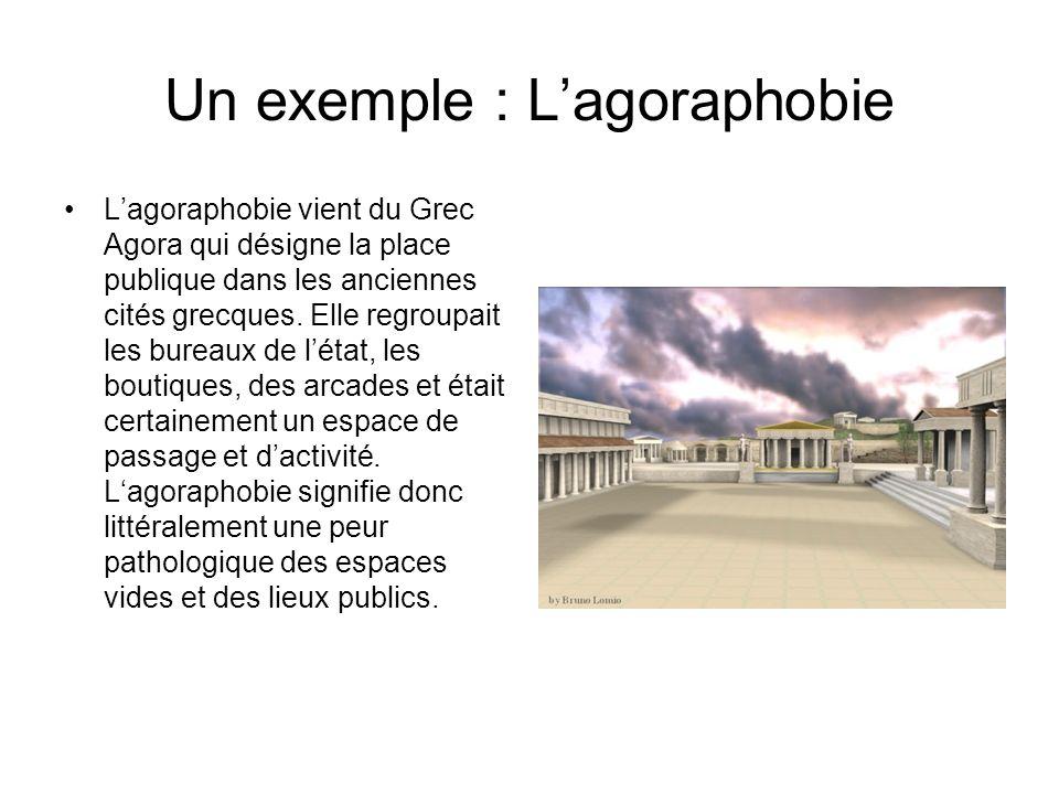 Un exemple : L'agoraphobie