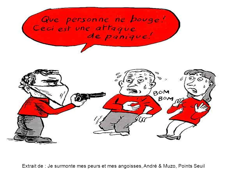Attaques de panique Extrait de : Je surmonte mes peurs et mes angoisses, André & Muzo, Points Seuil.