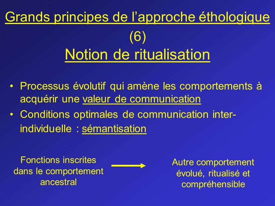 Grands principes de l'approche éthologique (6) Notion de ritualisation