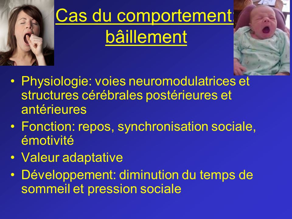 Bases thologiques en psychologie m dicale ppt video - Porter plainte pour agression verbale ...