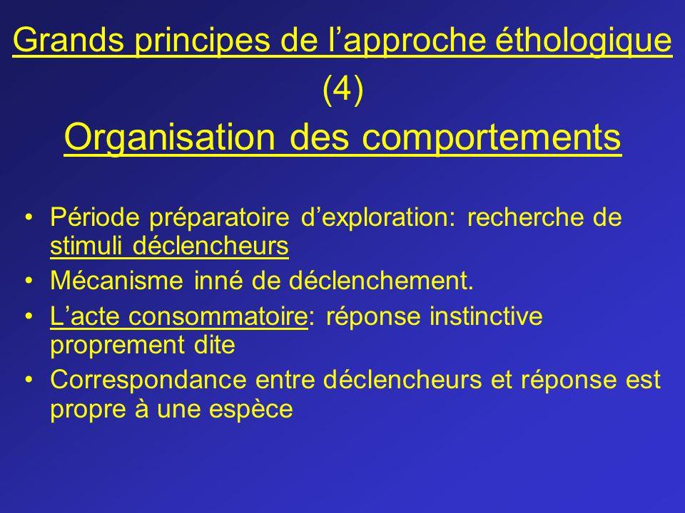 Grands principes de l'approche éthologique (4) Organisation des comportements