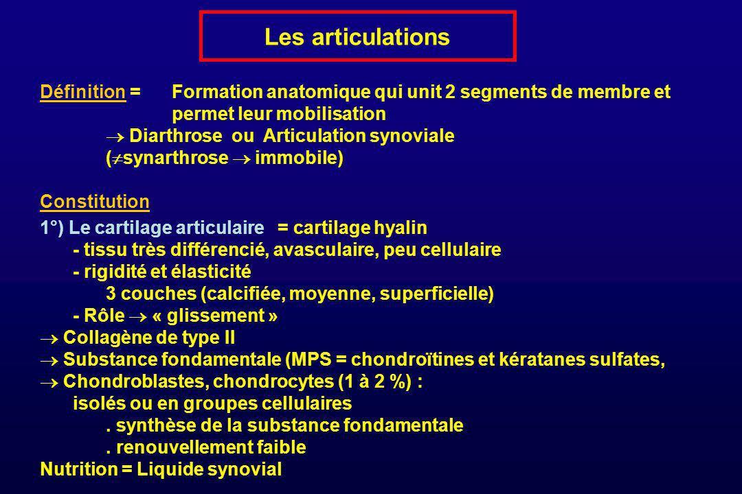 Les articulations Définition = Formation anatomique qui unit 2 segments de membre et permet leur mobilisation.