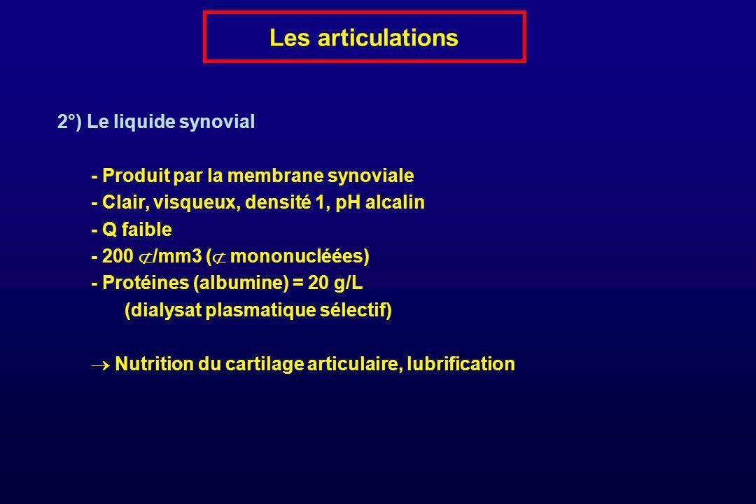Les articulations 2°) Le liquide synovial