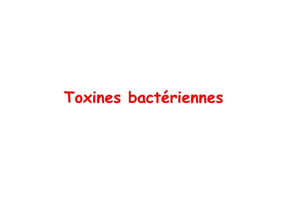 Toxines bactériennes