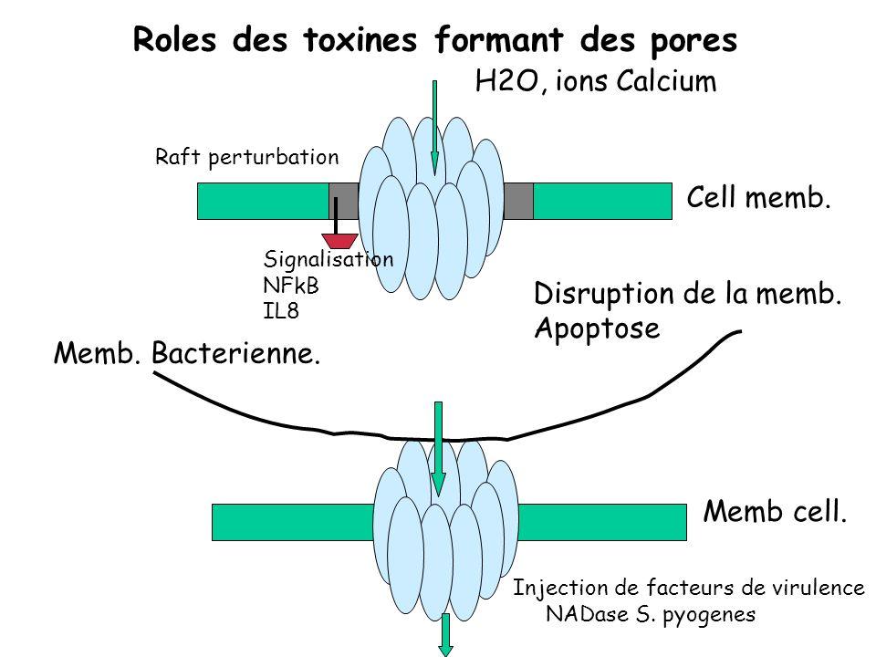 Roles des toxines formant des pores