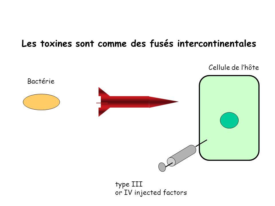 Les toxines sont comme des fusés intercontinentales