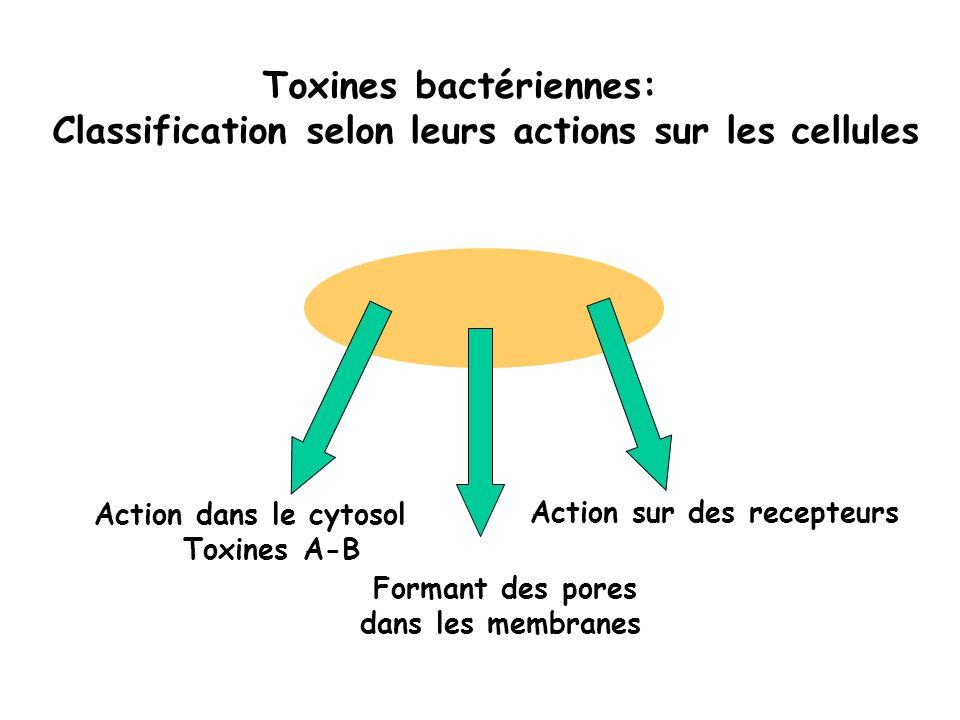 Toxines bactériennes: