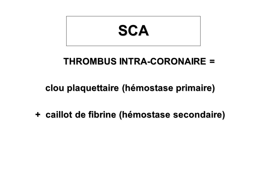 SCATHROMBUS INTRA-CORONAIRE = clou plaquettaire (hémostase primaire) + caillot de fibrine (hémostase secondaire)