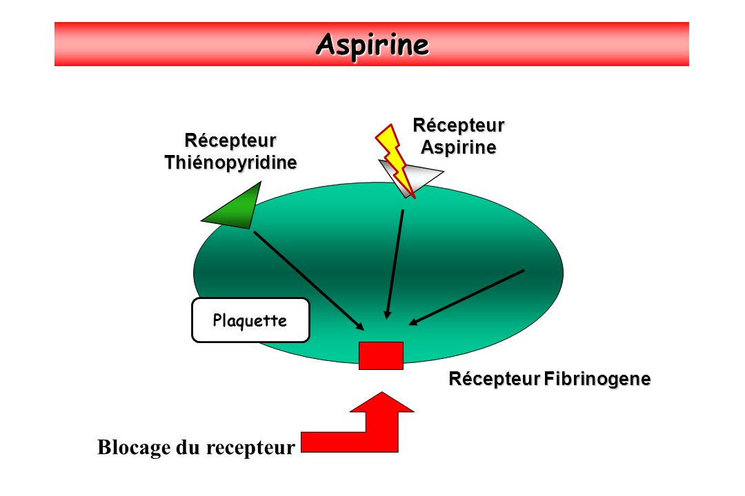 Récepteur Fibrinogene