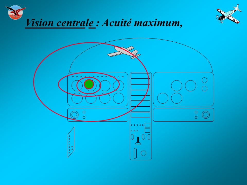 Vision centrale : Acuité maximum,
