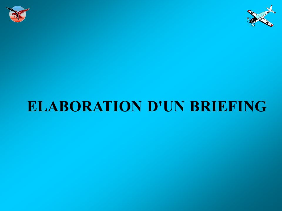 ELABORATION D UN BRIEFING