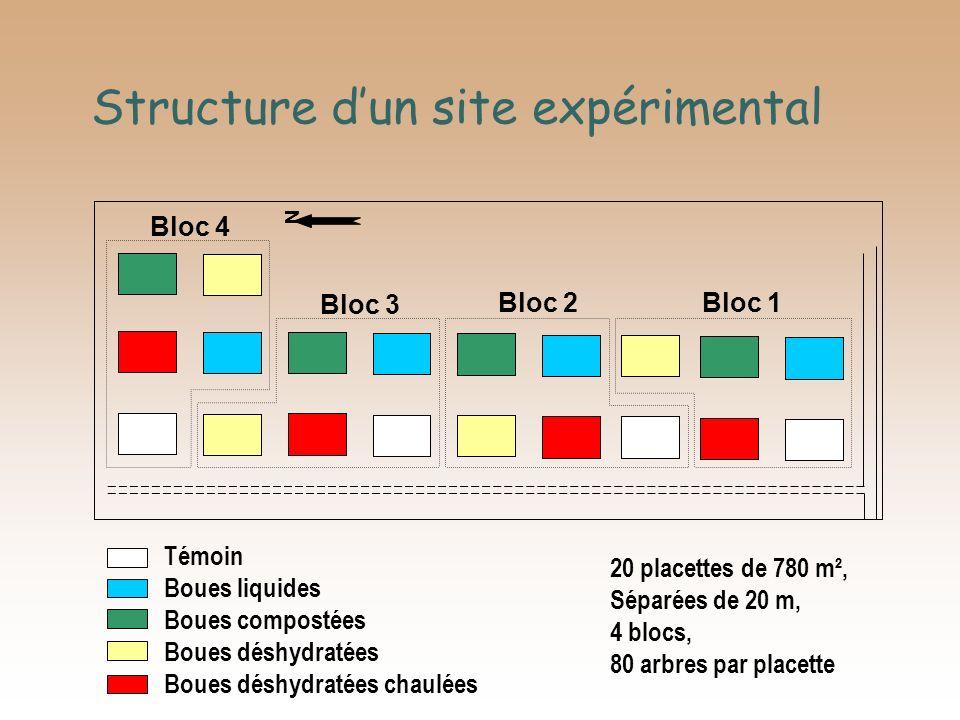 Structure d'un site expérimental