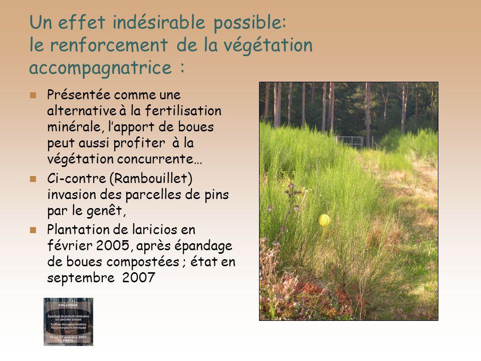 Un effet indésirable possible: le renforcement de la végétation accompagnatrice :