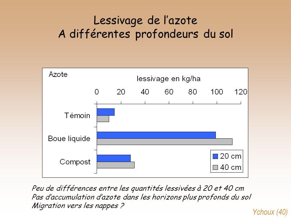 Lessivage de l'azote A différentes profondeurs du sol