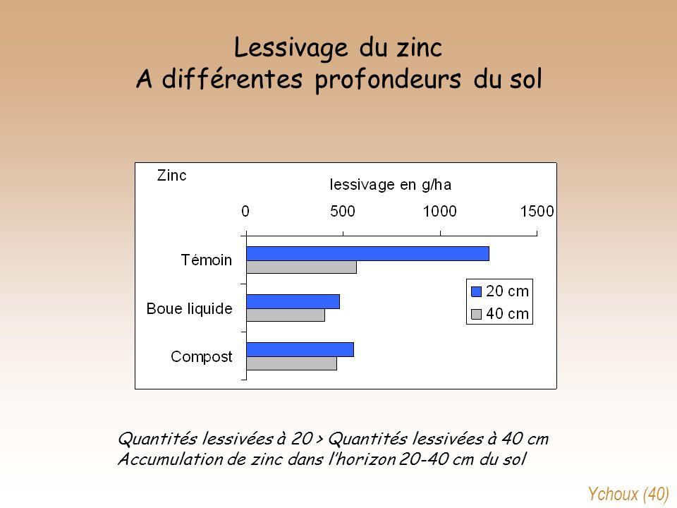 Lessivage du zinc A différentes profondeurs du sol