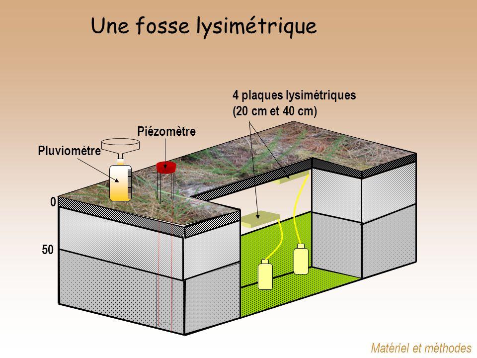 Une fosse lysimétrique