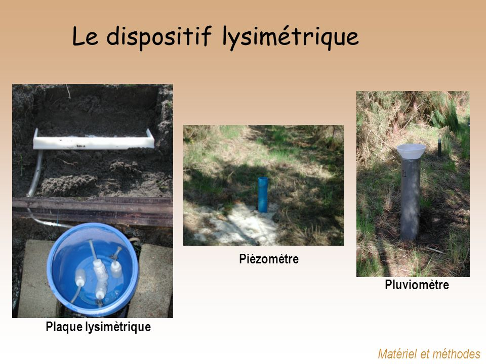 Le dispositif lysimétrique