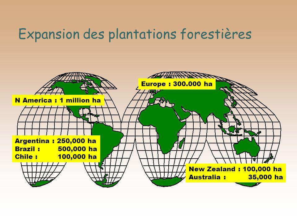 Expansion des plantations forestières