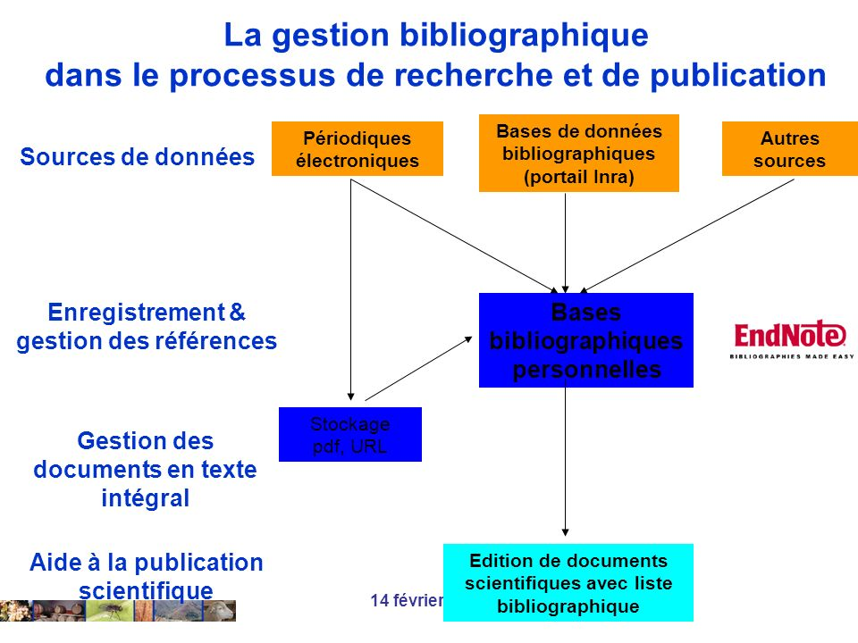 La gestion bibliographique dans le processus de recherche et de publication
