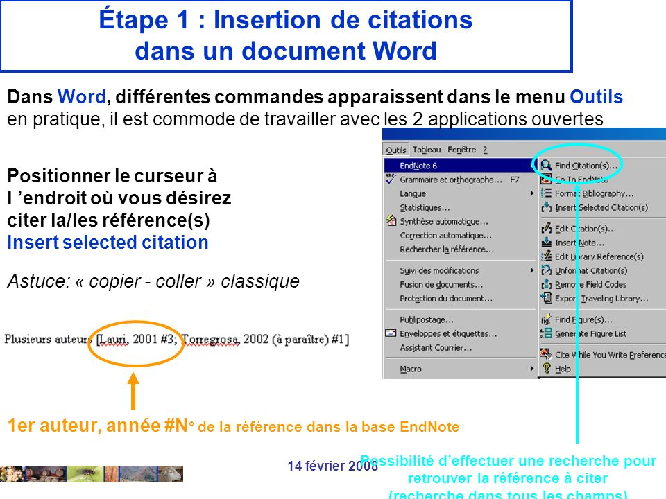 Étape 1 : Insertion de citations dans un document Word