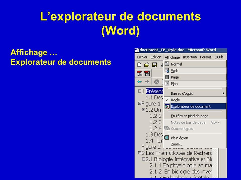L'explorateur de documents (Word)
