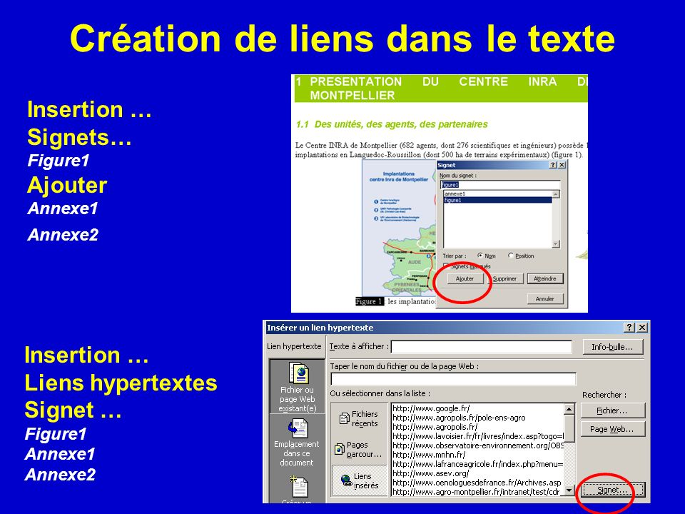 Création de liens dans le texte