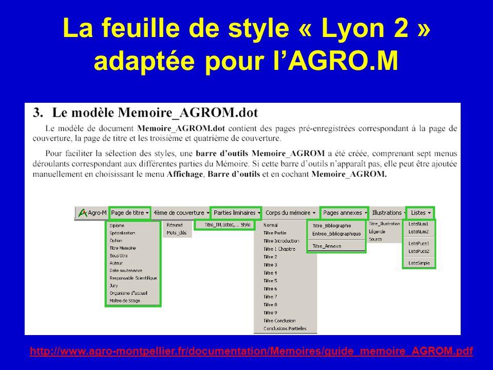 La feuille de style « Lyon 2 » adaptée pour l'AGRO.M