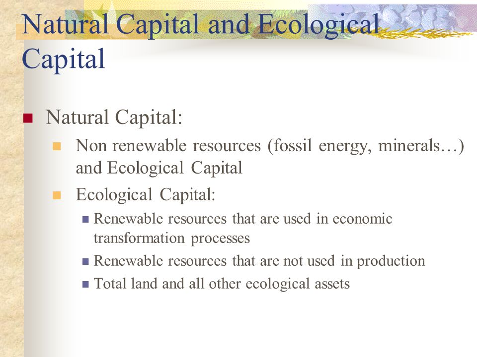 Natural Capital and Ecological Capital