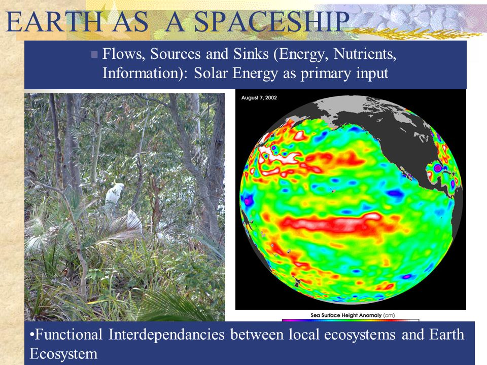 EARTH AS A SPACESHIP Flows, Sources and Sinks (Energy, Nutrients, Information): Solar Energy as primary input.