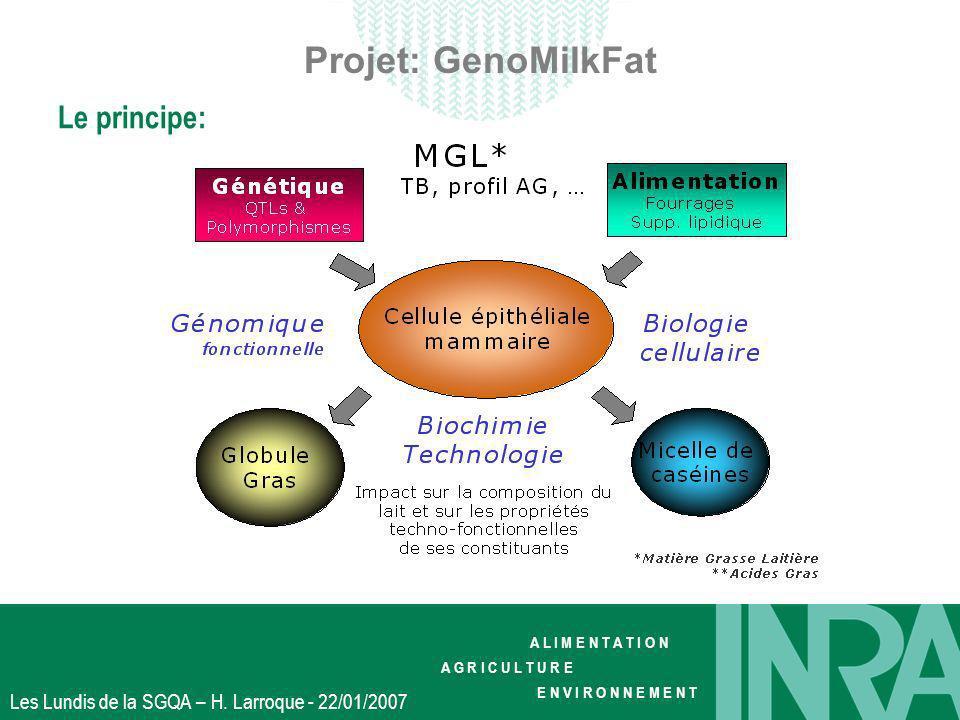 Projet: GenoMilkFat Le principe: