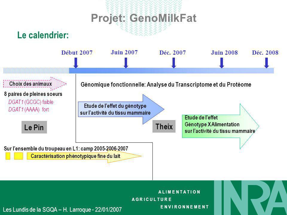 Projet: GenoMilkFat Le calendrier: Theix Le Pin Début 2007 Juin 2007