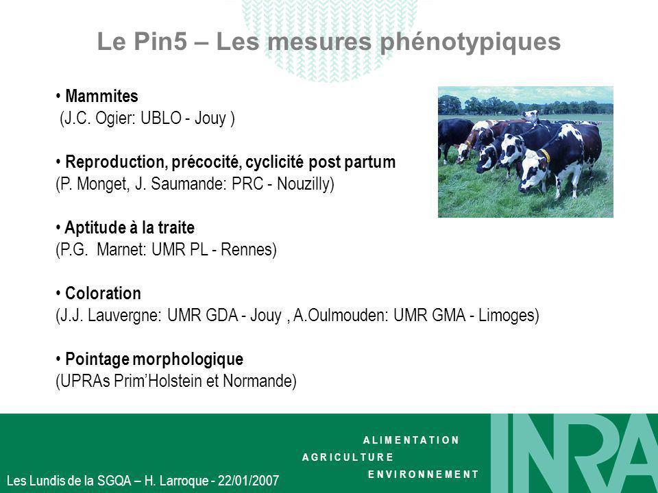 Le Pin5 – Les mesures phénotypiques