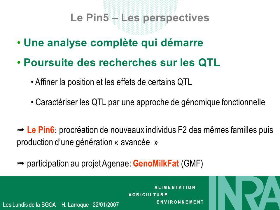 Le Pin5 – Les perspectives