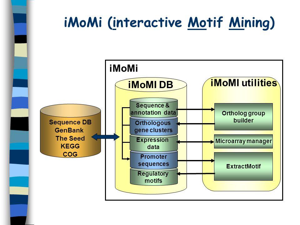 iMoMi (interactive Motif Mining)