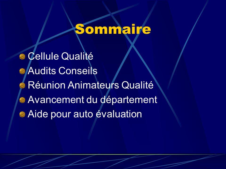 Sommaire Cellule Qualité Audits Conseils Réunion Animateurs Qualité