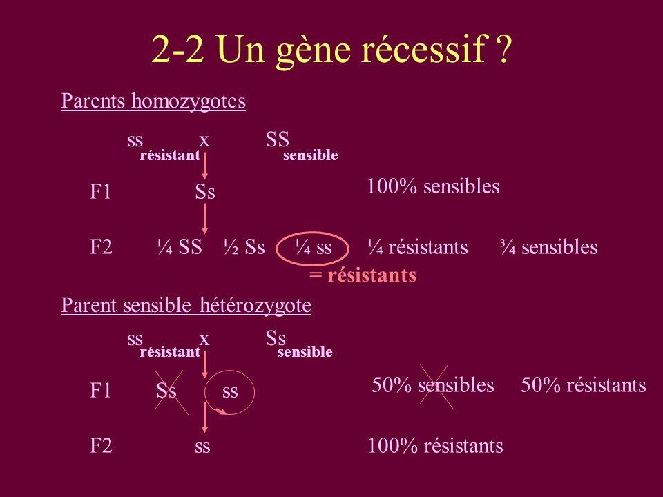 2-2 Un gène récessif ss x SS F1 Ss 100% sensibles F2 ¼ SS ½ Ss ¼ ss
