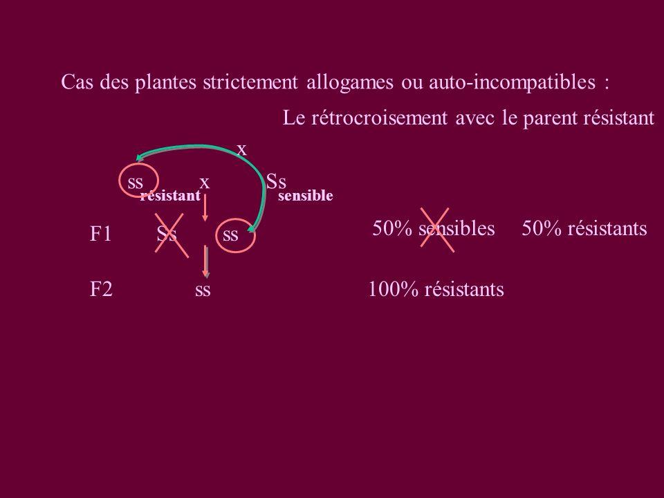Cas des plantes strictement allogames ou auto-incompatibles :
