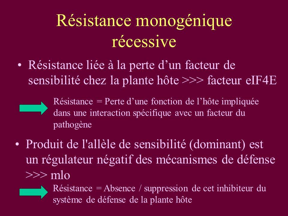 Résistance monogénique récessive