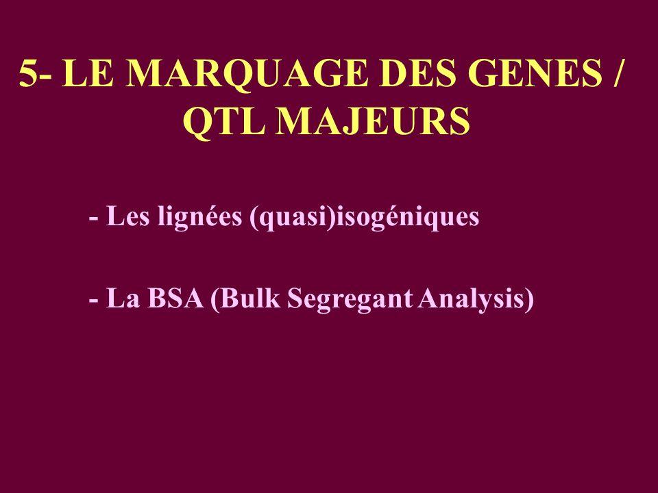 5- LE MARQUAGE DES GENES /