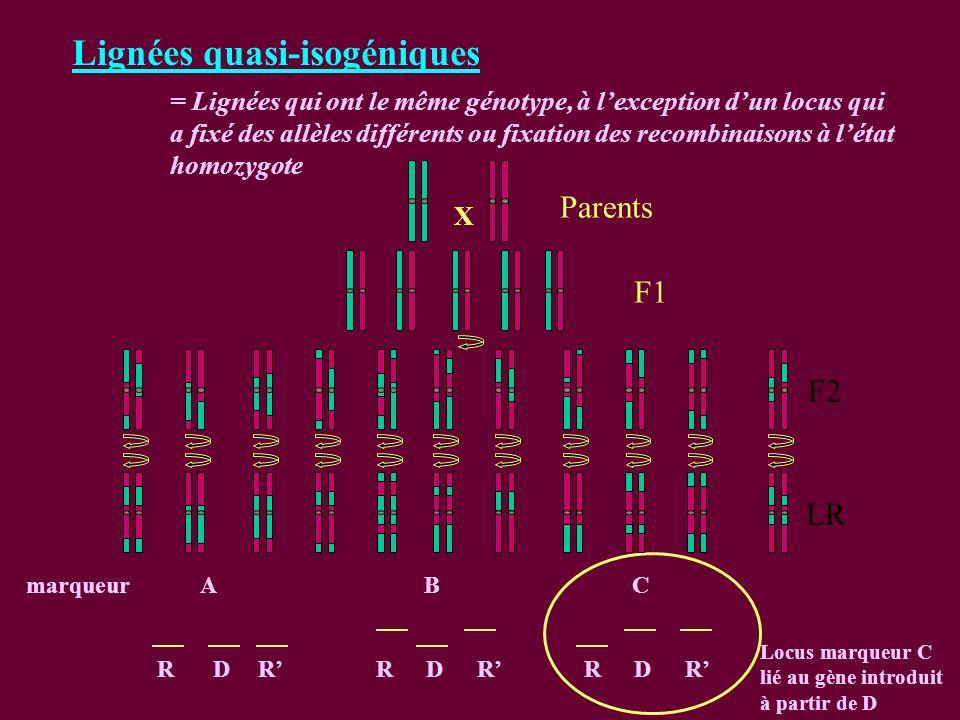 Lignées quasi-isogéniques