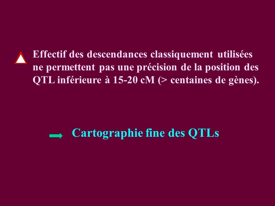 Cartographie fine des QTLs