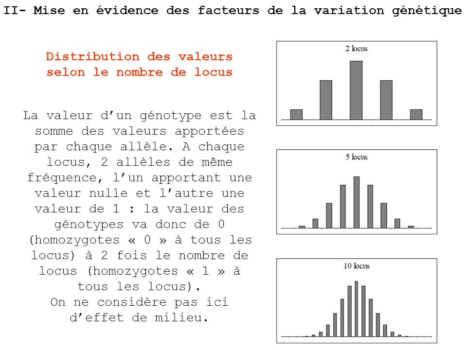 Distribution des valeurs selon le nombre de locus