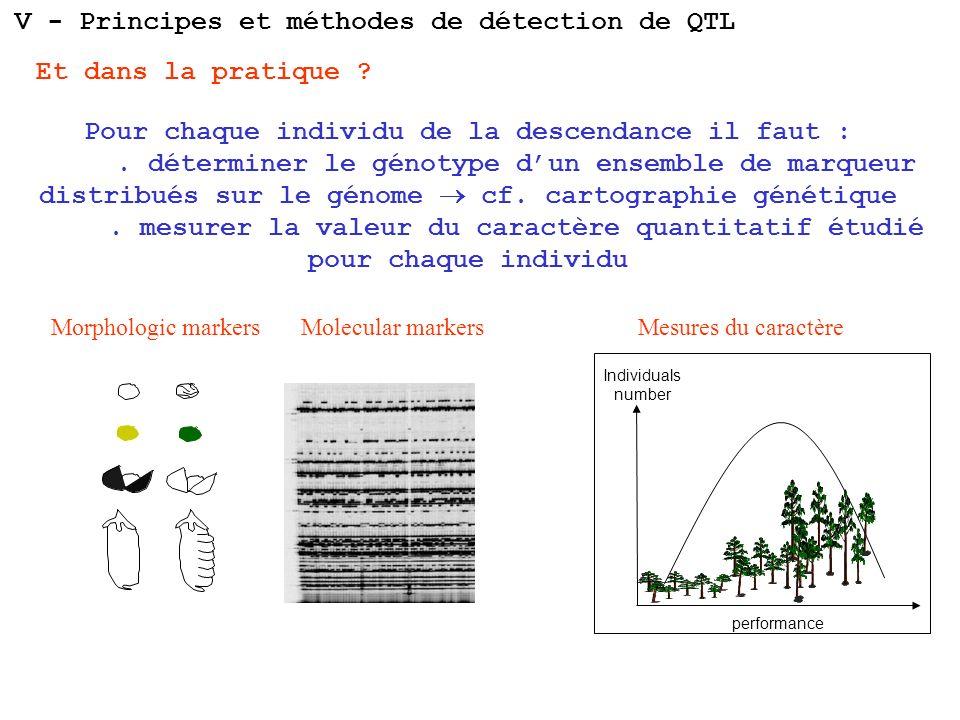 V - Principes et méthodes de détection de QTL