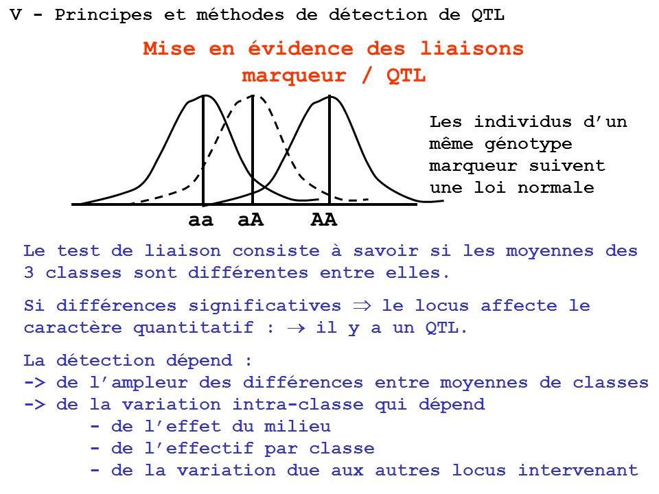 Mise en évidence des liaisons marqueur / QTL