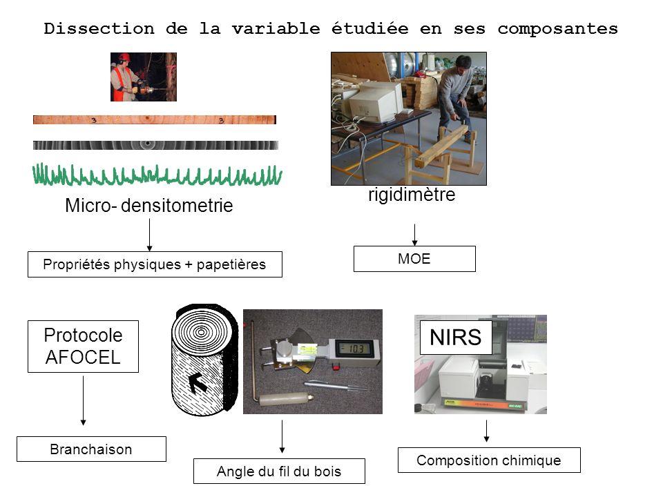 Dissection de la variable étudiée en ses composantes