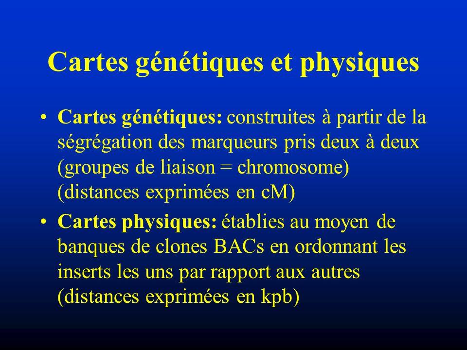 Cartes génétiques et physiques