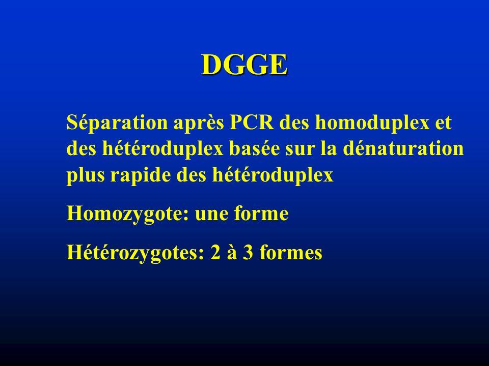 DGGE Séparation après PCR des homoduplex et des hétéroduplex basée sur la dénaturation plus rapide des hétéroduplex.