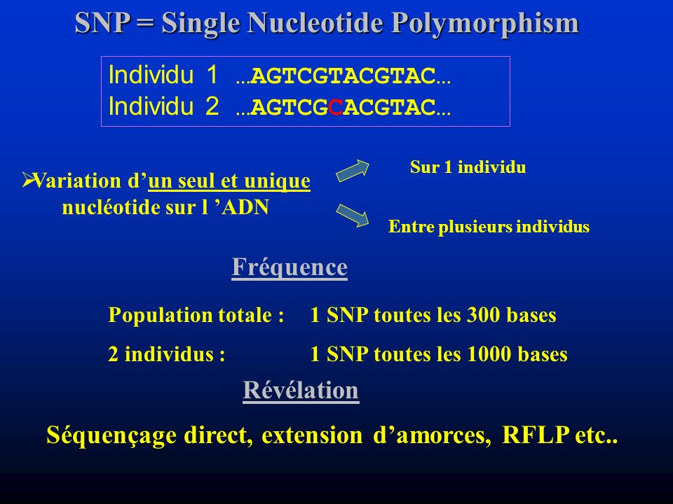 SNP = Single Nucleotide Polymorphism